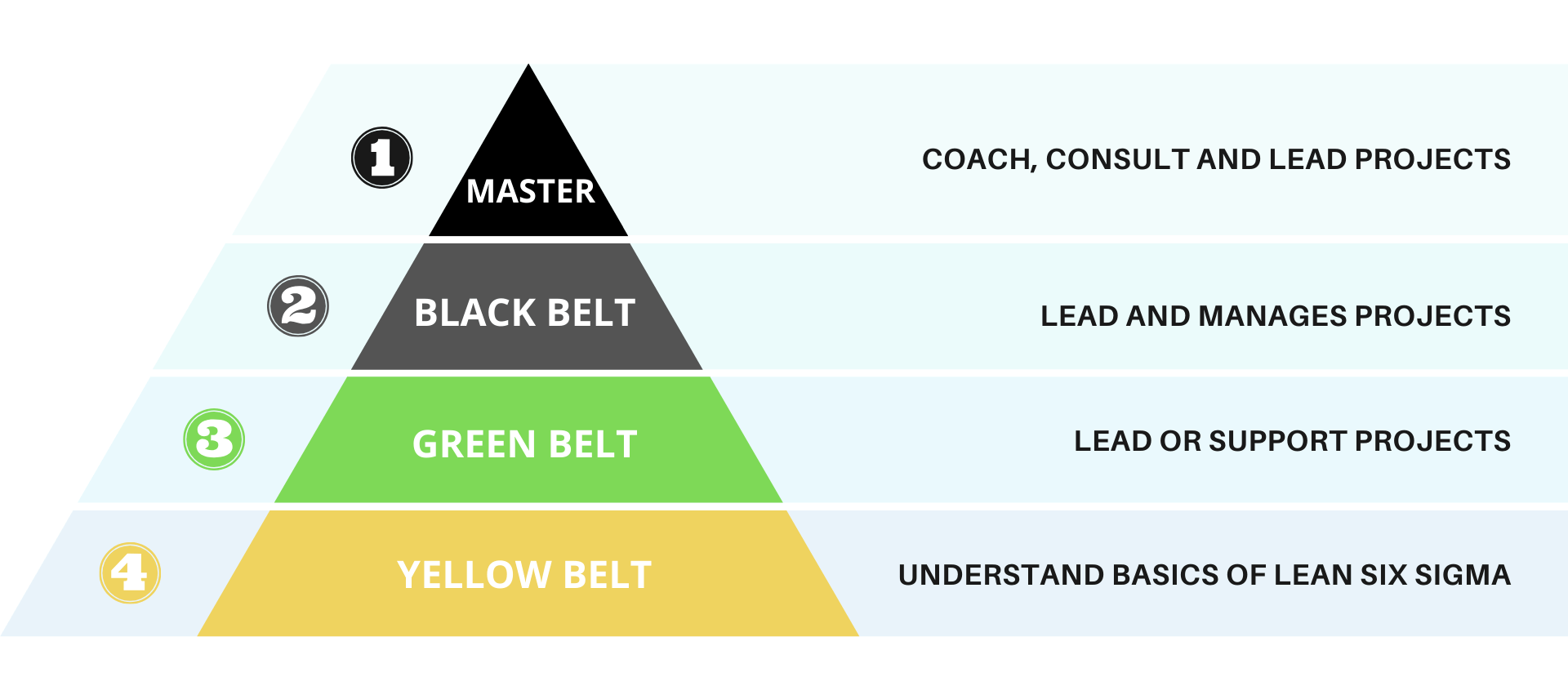 six sigma yellow belt to be taken before green belt